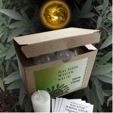 Sacred White Sage World Magic Votives (Box of 24)